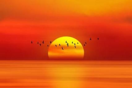 Planetagoma-el-poder-del-color-naranja-cuatro