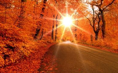 Planetagoma-el-poder-del-color-naranja-nueve.jpg